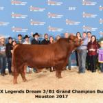 CX Legends Dream 3/B1